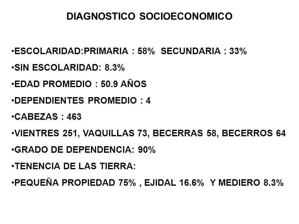 DIAGNOSTICO SOCIOECONOMICO ESCOLARIDAD:PRIMARIA : 58% SECUNDARIA : 33% SIN ESCOLARIDAD: 8.3% EDAD PROMEDIO : 50.9 AÑOS DEPENDIENTES PROMEDIO : 4 CABEZ