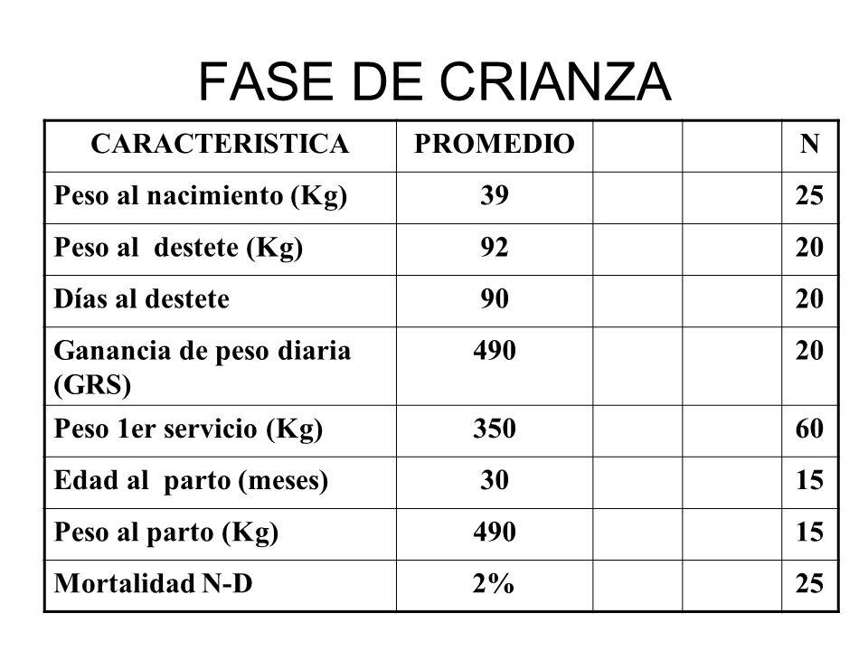 CARACTERISTICAPROMEDION Peso al nacimiento (Kg)3925 Peso al destete (Kg)9220 Días al destete9020 Ganancia de peso diaria (GRS) 49020 Peso 1er servicio