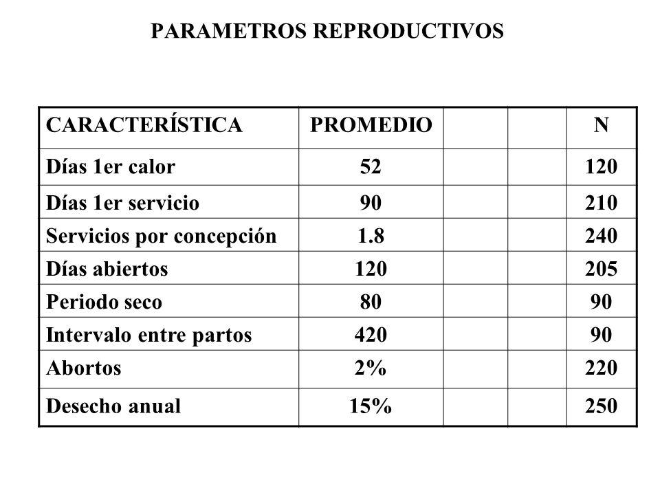 PARAMETROS PRODUCTIVOS CARACTERÍSTICAXN Producción l/vaca/día19160 Promedio días /lactancia210180
