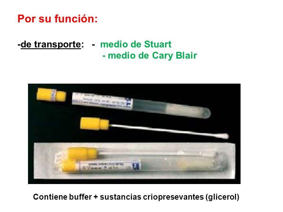 Por su función: -de transporte: - medio de Stuart - medio de Cary Blair Contiene buffer + sustancias criopresevantes (glicerol)
