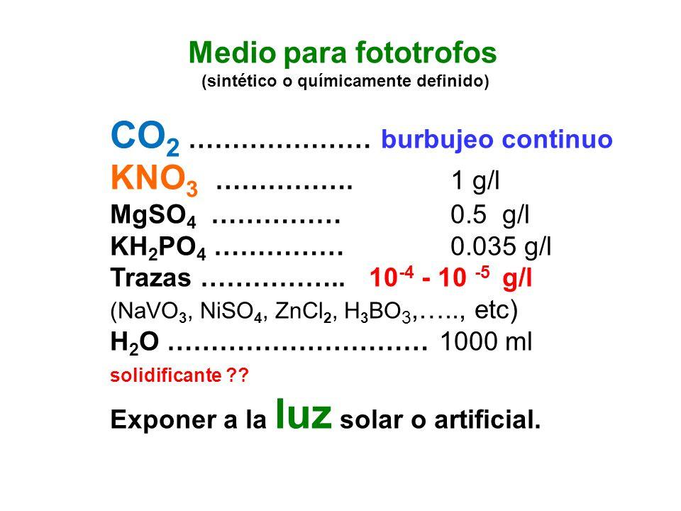 Medio para fototrofos (sintético o químicamente definido) CO 2 ………………… burbujeo continuo KNO 3 ……………. 1 g/l MgSO 4 …………… 0.5 g/l KH 2 PO 4 …………… 0.035