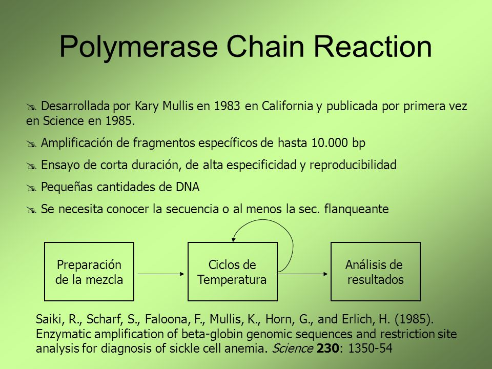 Polymerase Chain Reaction Desarrollada por Kary Mullis en 1983 en California y publicada por primera vez en Science en 1985.