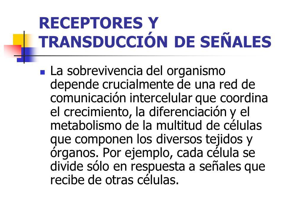 RECEPTORES Y TRANSDUCCIÓN DE SEÑALES La sobrevivencia del organismo depende crucialmente de una red de comunicación intercelular que coordina el creci