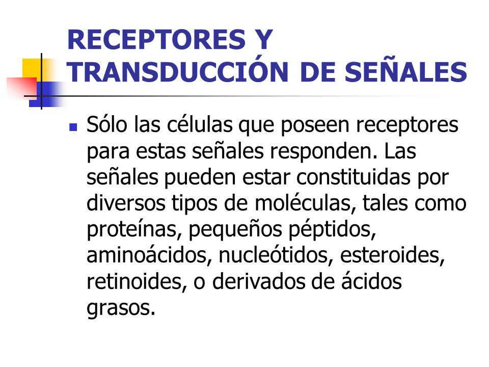 RECEPTORES Y TRANSDUCCIÓN DE SEÑALES Sólo las células que poseen receptores para estas señales responden. Las señales pueden estar constituidas por di