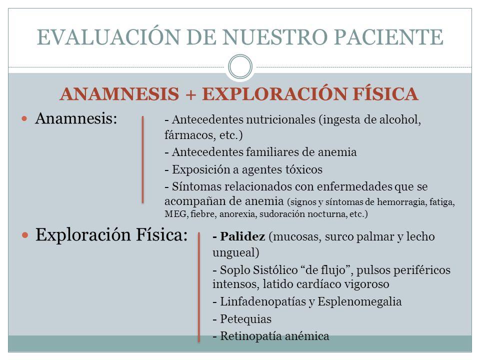 EVALUACIÓN DE NUESTRO PACIENTE ANAMNESIS + EXPLORACIÓN FÍSICA Anamnesis: - Antecedentes nutricionales (ingesta de alcohol, fármacos, etc.) - Anteceden
