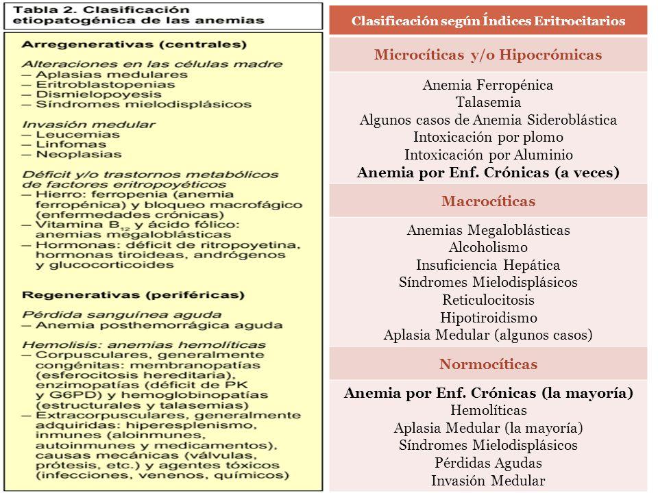 Clasificación según Índices Eritrocitarios Microcíticas y/o Hipocrómicas Anemia Ferropénica Talasemia Algunos casos de Anemia Sideroblástica Intoxicac