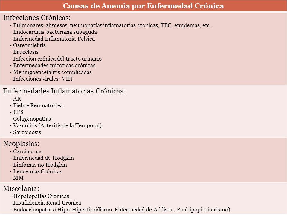 Causas de Anemia por Enfermedad Crónica Infecciones Crónicas: - Pulmonares: abscesos, neumopatías inflamatorias crónicas, TBC, empiemas, etc. - Endoca