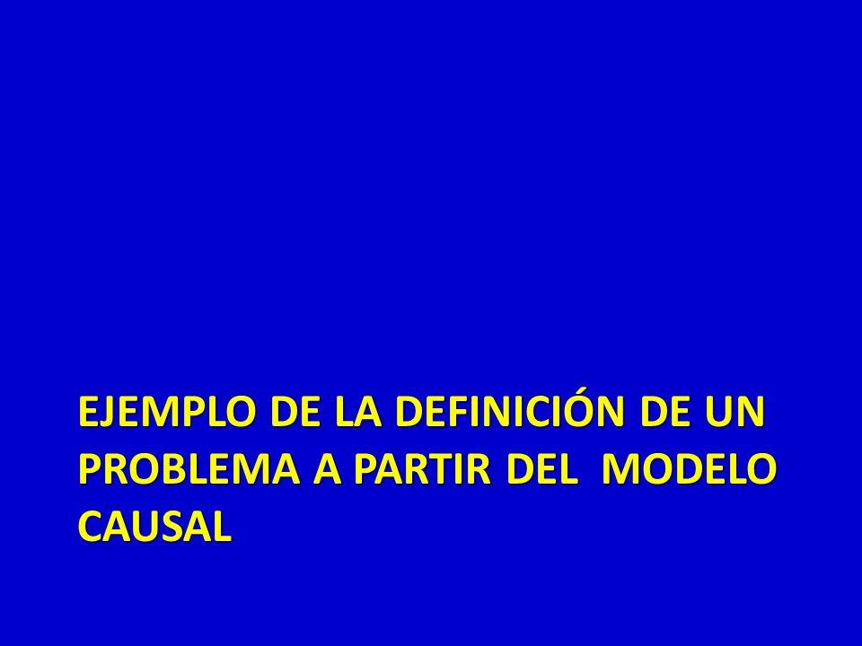 EJEMPLO DE LA DEFINICIÓN DE UN PROBLEMA A PARTIR DEL MODELO CAUSAL
