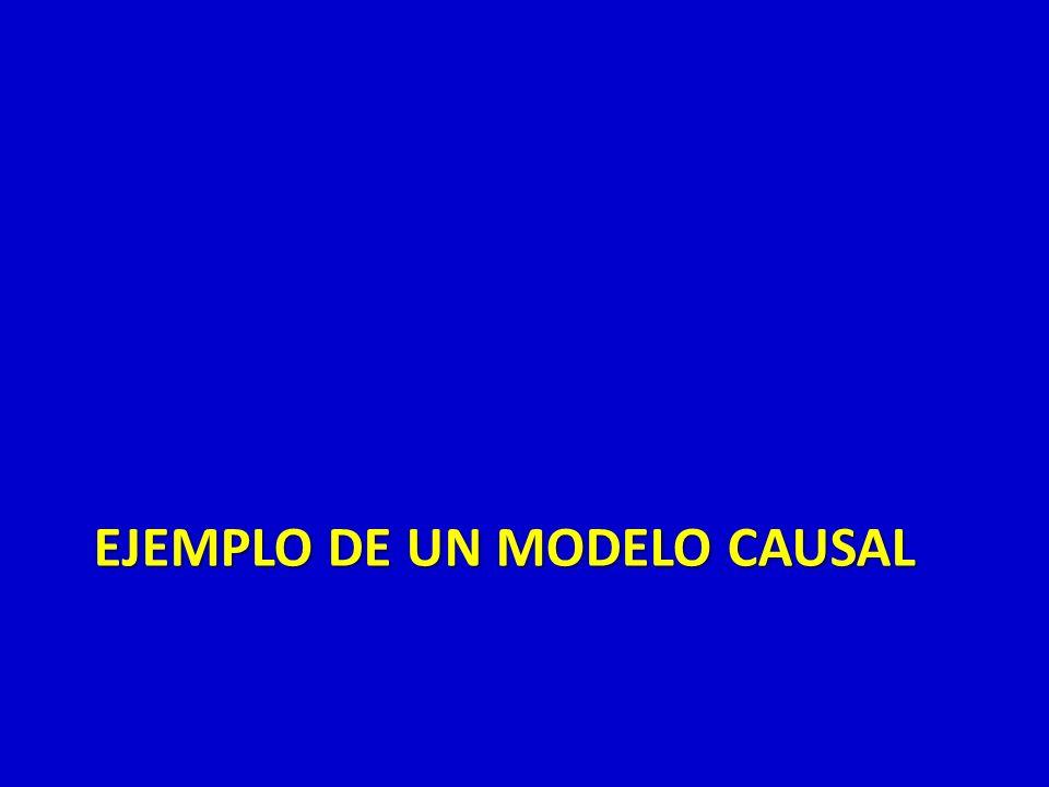 EJEMPLO DE UN MODELO CAUSAL