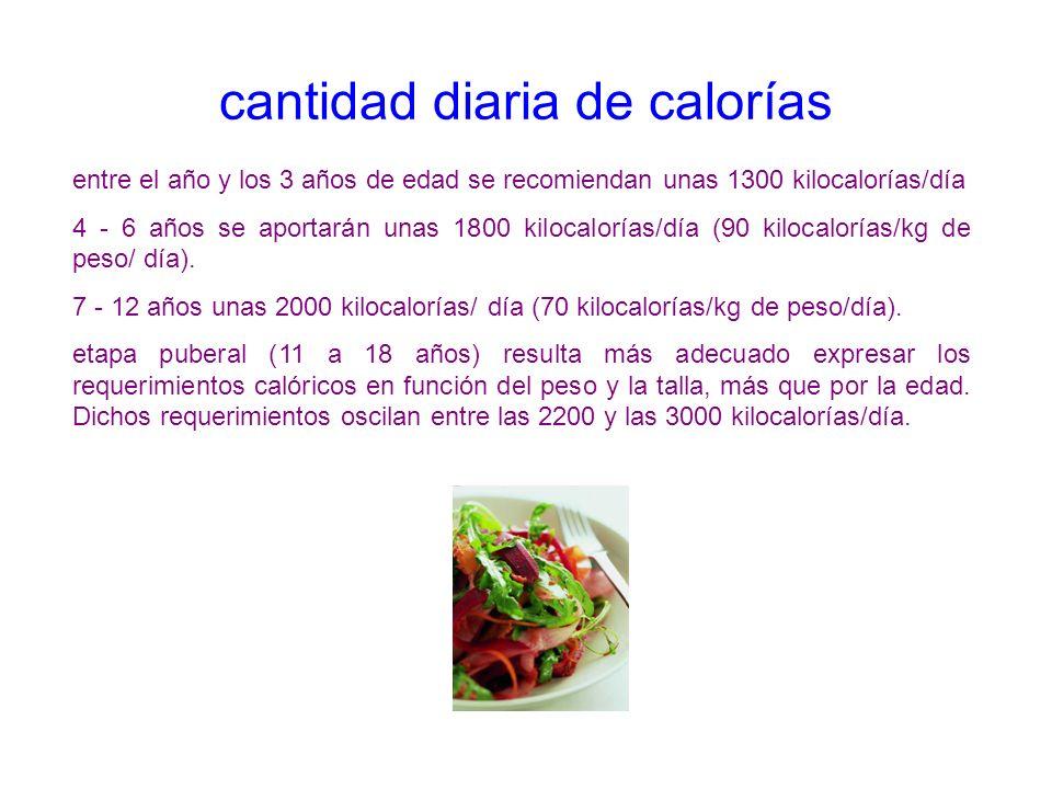 cantidad diaria de calorías entre el año y los 3 años de edad se recomiendan unas 1300 kilocalorías/día 4 - 6 años se aportarán unas 1800 kilocalorías