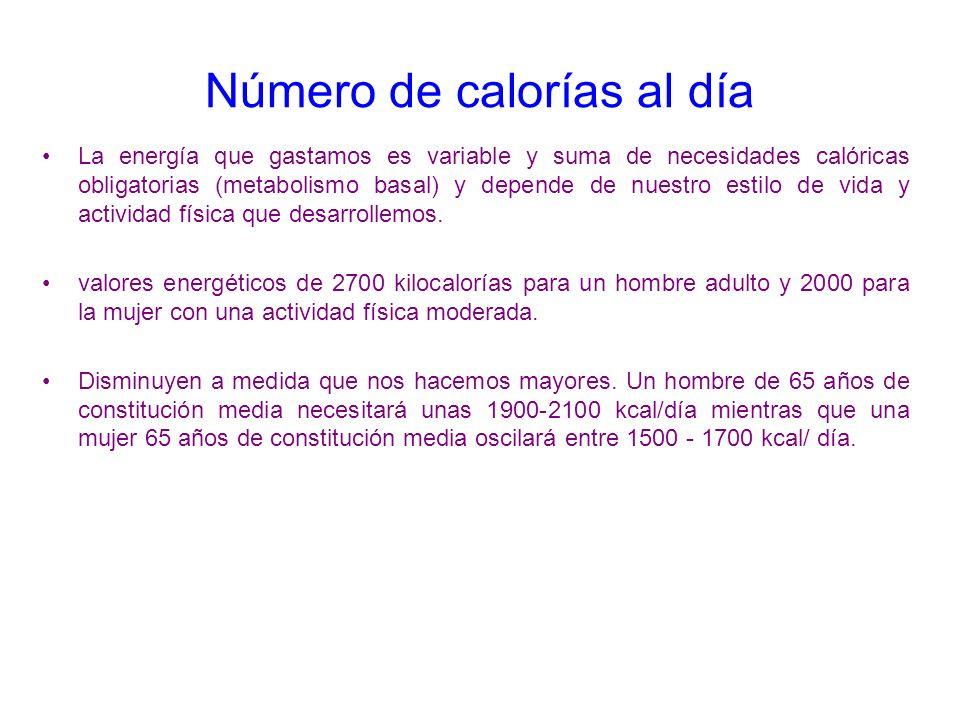 Número de calorías al día La energía que gastamos es variable y suma de necesidades calóricas obligatorias (metabolismo basal) y depende de nuestro es