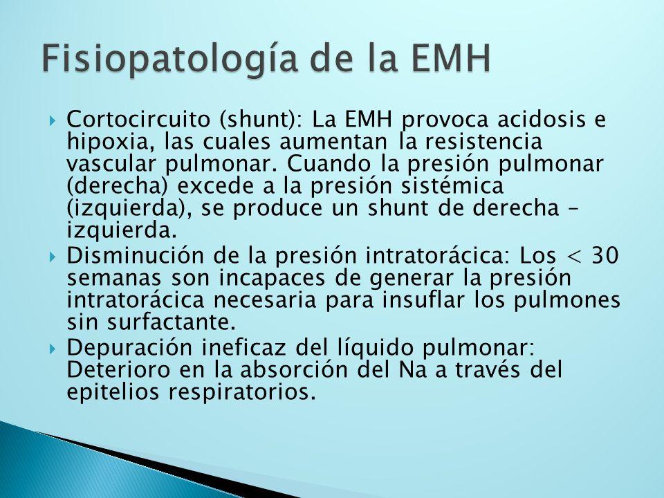 Cortocircuito (shunt): La EMH provoca acidosis e hipoxia, las cuales aumentan la resistencia vascular pulmonar. Cuando la presión pulmonar (derecha) e