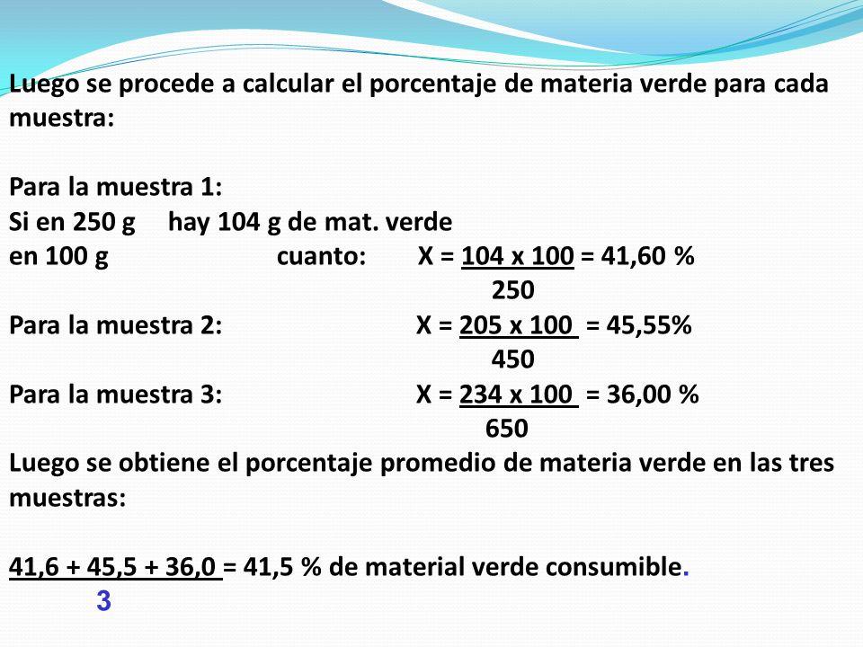 Luego se procede a calcular el porcentaje de materia verde para cada muestra: Para la muestra 1: Si en 250 g hay 104 g de mat. verde en 100 g cuanto: