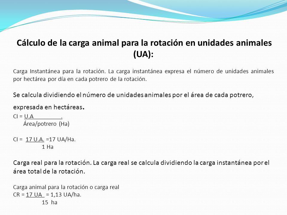Cálculo de la carga animal para la rotación en unidades animales (UA): Carga Instantánea para la rotación. La carga instantánea expresa el número de u