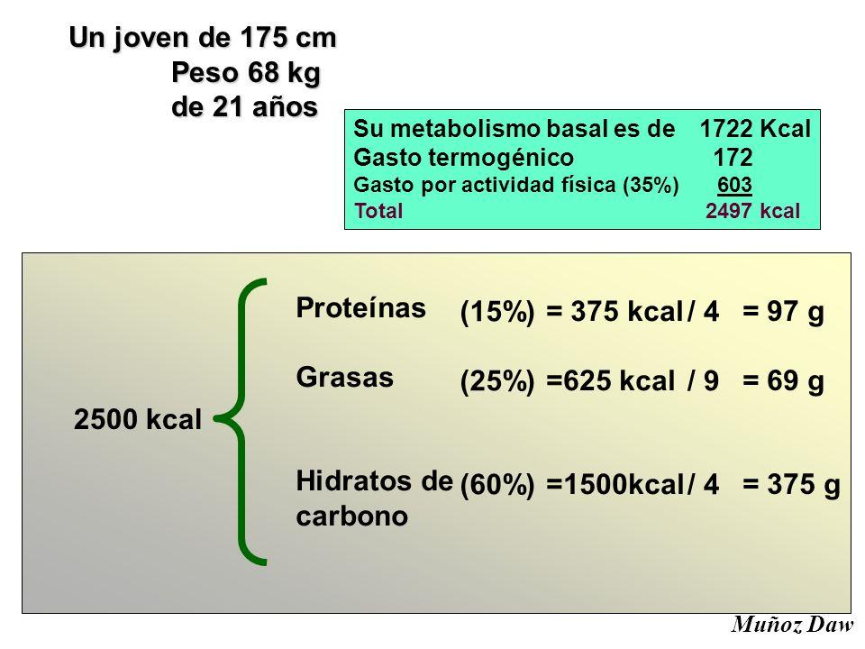 Un joven de 175 cm Peso 68 kg Peso 68 kg de 21 años de 21 años Su metabolismo basal es de 1722 Kcal Gasto termogénico 172 Gasto por actividad física (35%) 603 Total 2497 kcal 2500 kcal Proteínas Grasas Hidratos de carbono (15%) (25%) (60%) / 4 / 9 / 4 = 375 kcal =625 kcal =1500kcal = 97 g = 69 g = 375 g Muñoz Daw