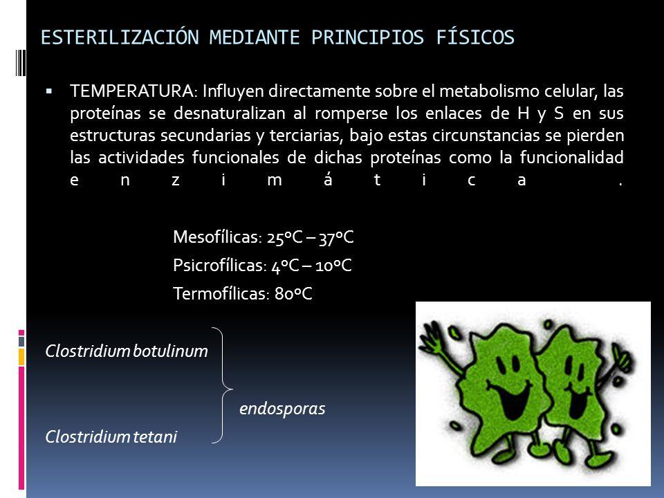 ESTERILIZACIÓN MEDIANTE PRINCIPIOS FÍSICOS TEMPERATURA: Influyen directamente sobre el metabolismo celular, las proteínas se desnaturalizan al rompers