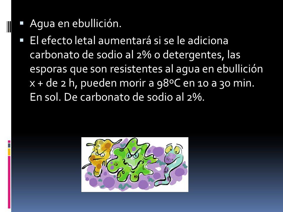 Agua en ebullición. El efecto letal aumentará si se le adiciona carbonato de sodio al 2% o detergentes, las esporas que son resistentes al agua en ebu