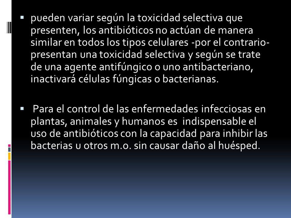pueden variar según la toxicidad selectiva que presenten, los antibióticos no actúan de manera similar en todos los tipos celulares -por el contrario-
