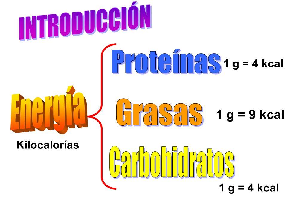 INFORMACIÓN NUTRIMENTAL Tamaño de la ración:3 PIEZAS Raciones por paquete3 _____________________________________ CONTENIDO ENERGÉTICO126 kcal Grasa total6.1 g de la cual Grasa Saturada3.7 g Grasa Monoinsaturada1.7 g Grasa poliinsaturada0.5 g Colesterol0 mg Sodio83 mg Hidratos de carbono16.4 g Fibra dietética0.3 g Proteínas1.4 g 9 pz 378 18.3 4.5 11.1 1.5 0 249 49.2 0.9 4.2 Todo el paquetito