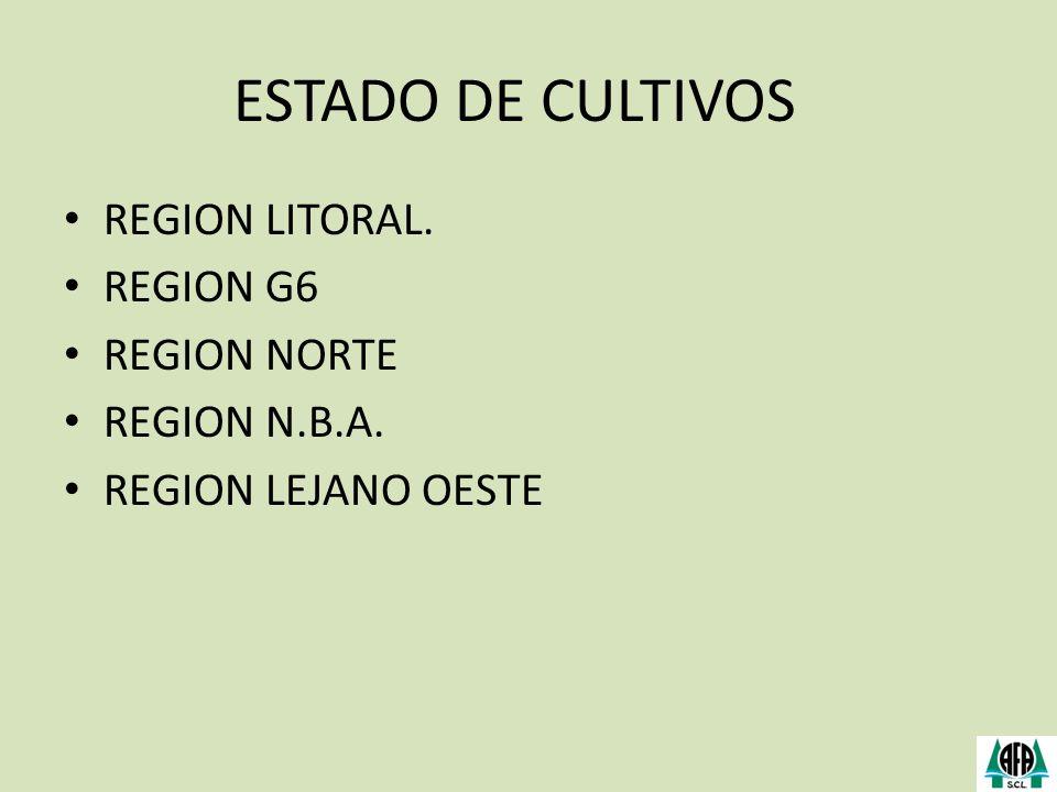 ESTADO DE CULTIVOS REGION LITORAL. REGION G6 REGION NORTE REGION N.B.A. REGION LEJANO OESTE
