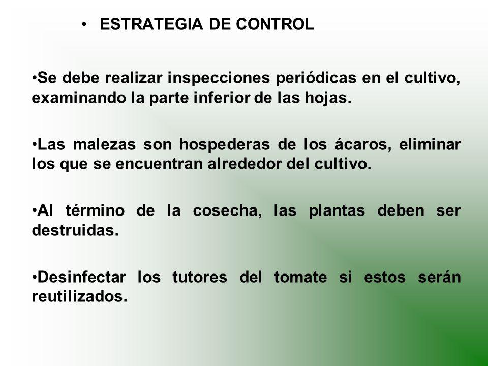 Criterios para tomar decisión: Identificación de plagas y los daños ocasionados.