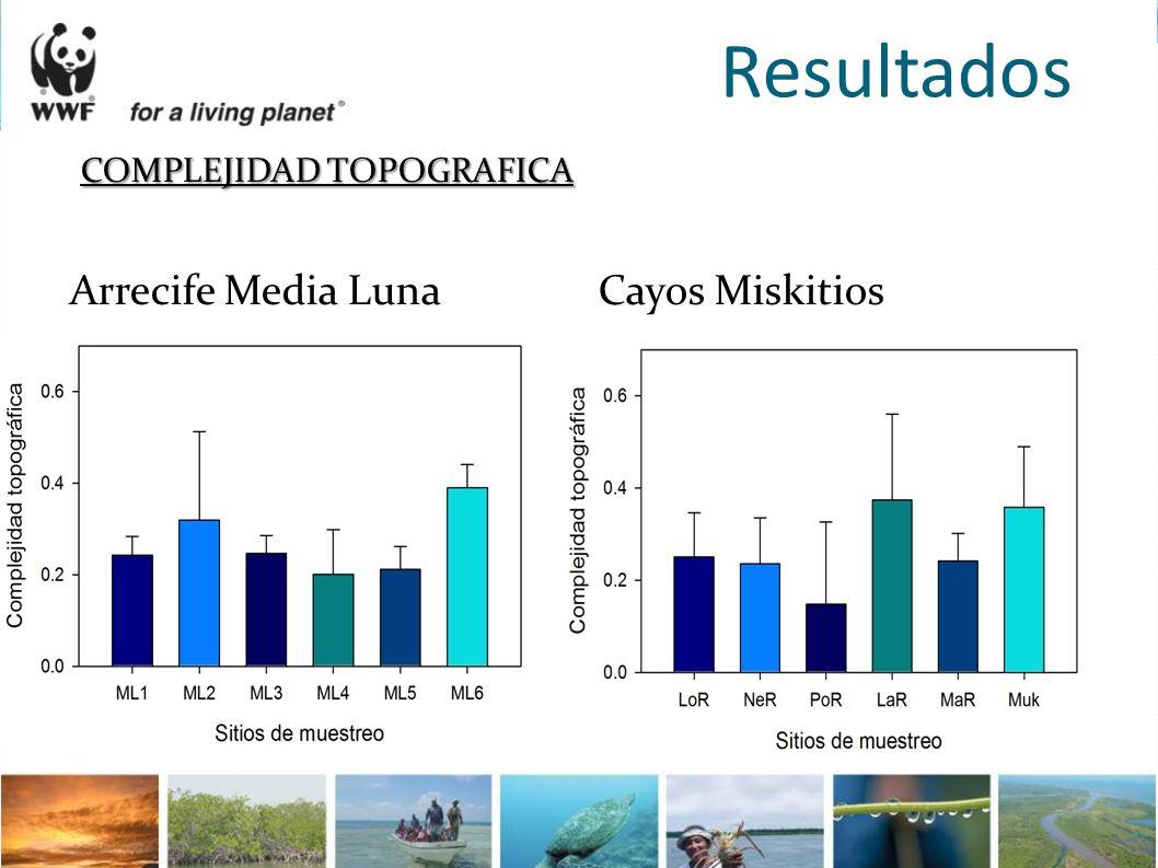 Resultados COMPLEJIDAD TOPOGRAFICA Arrecife Media Luna Cayos Miskitios
