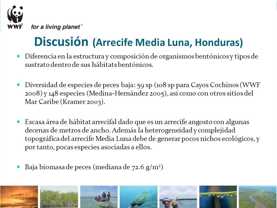 Discusión (Arrecife Media Luna, Honduras) Diferencia en la estructura y composición de organismos bentónicos y tipos de sustrato dentro de sus hábitat