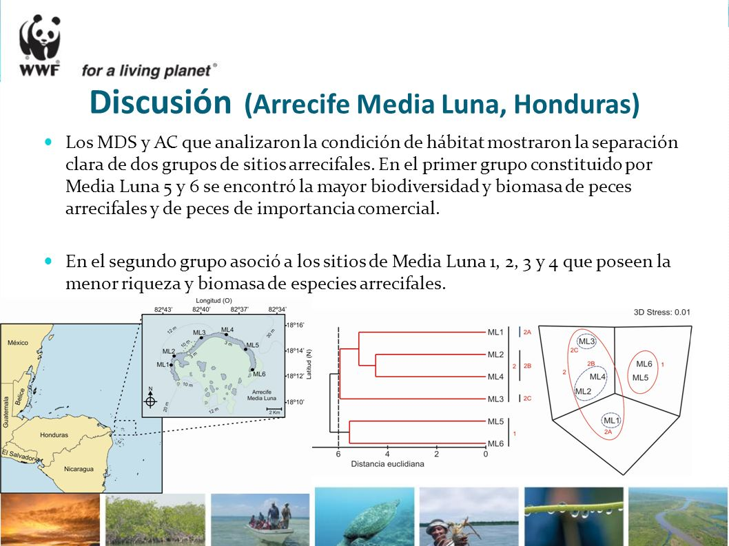 Los MDS y AC que analizaron la condición de hábitat mostraron la separación clara de dos grupos de sitios arrecifales. En el primer grupo constituido