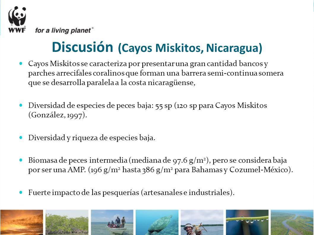 Discusión (Cayos Miskitos, Nicaragua) Cayos Miskitos se caracteriza por presentar una gran cantidad bancos y parches arrecifales coralinos que forman