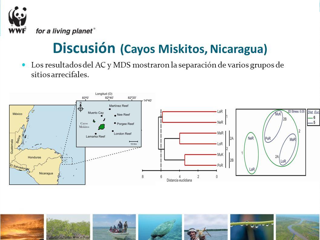 Los resultados del AC y MDS mostraron la separación de varios grupos de sitios arrecifales. Discusión (Cayos Miskitos, Nicaragua)
