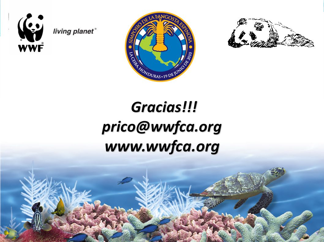 Gracias!!! prico@wwfca.org www.wwfca.org Gracias!!! prico@wwfca.org www.wwfca.org