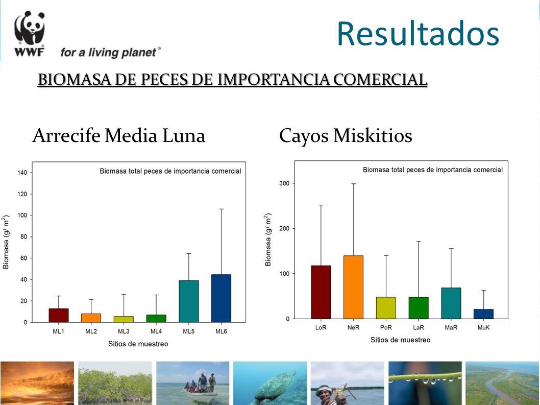 Resultados BIOMASA DE PECES DE IMPORTANCIA COMERCIAL Arrecife Media Luna Cayos Miskitios