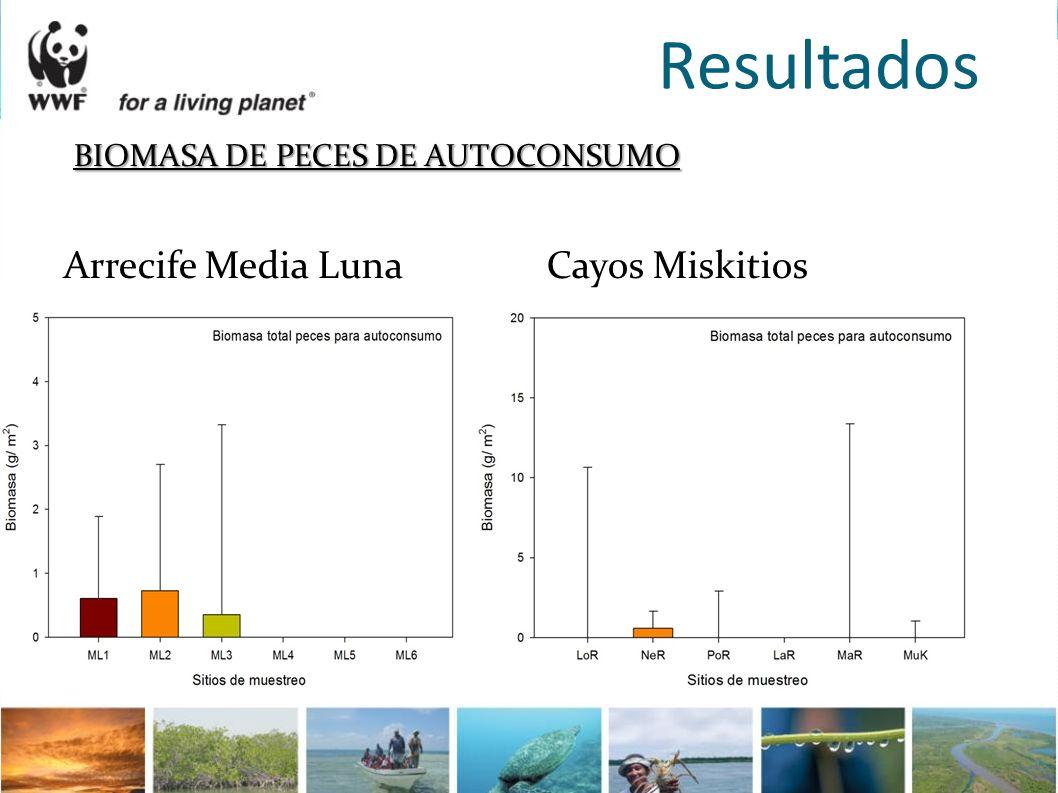 Resultados BIOMASA DE PECES DE AUTOCONSUMO Arrecife Media Luna Cayos Miskitios