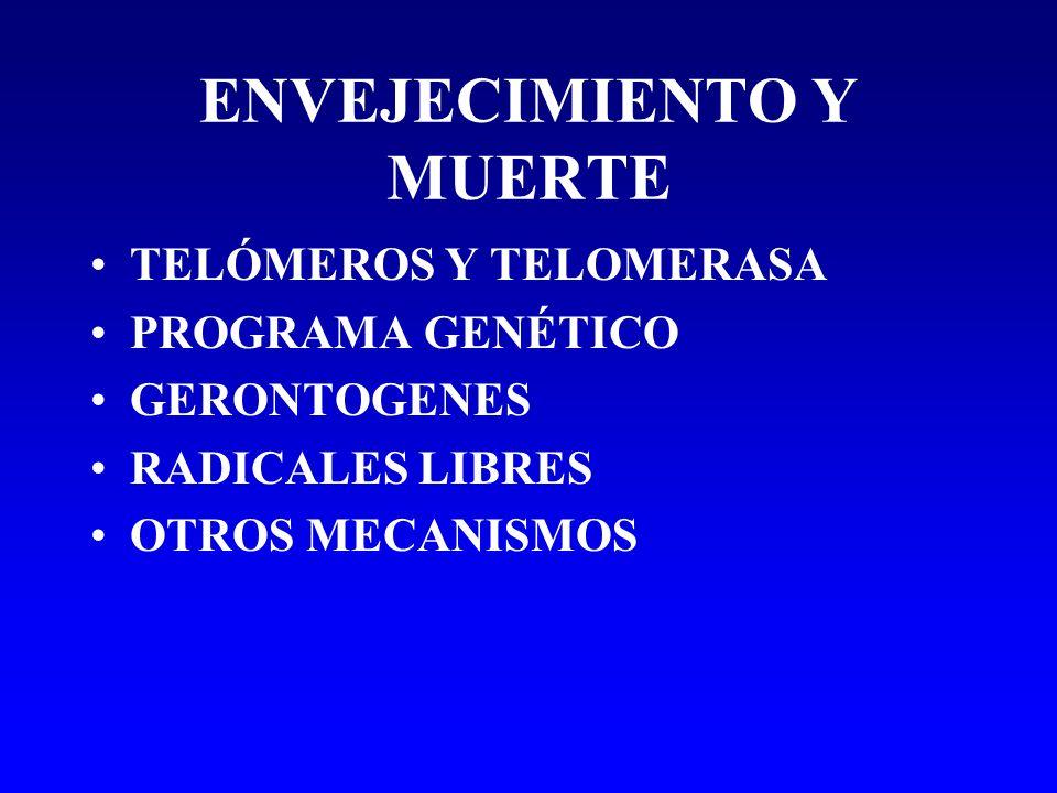 ENVEJECIMIENTO Y MUERTE TELÓMEROS Y TELOMERASA PROGRAMA GENÉTICO GERONTOGENES RADICALES LIBRES OTROS MECANISMOS