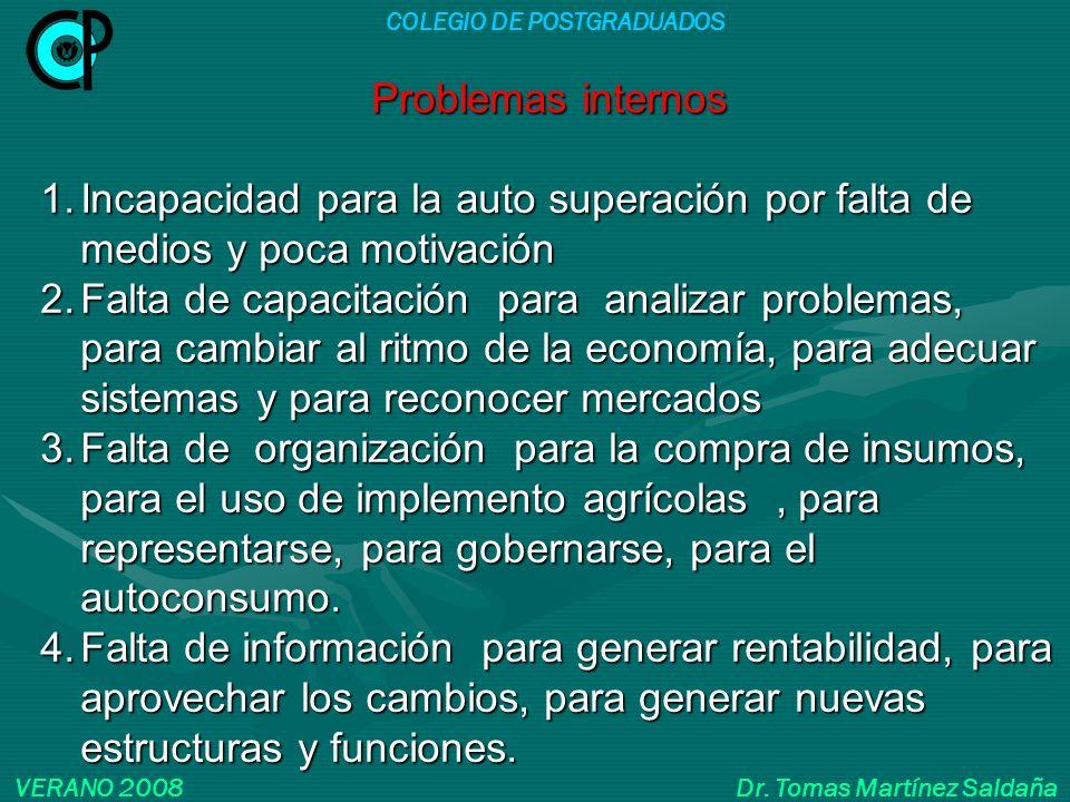 COLEGIO DE POSTGRADUADOS VERANO 2008 Dr. Tomas Martínez Saldaña Problemas internos 1.Incapacidad para la auto superación por falta de medios y poca mo