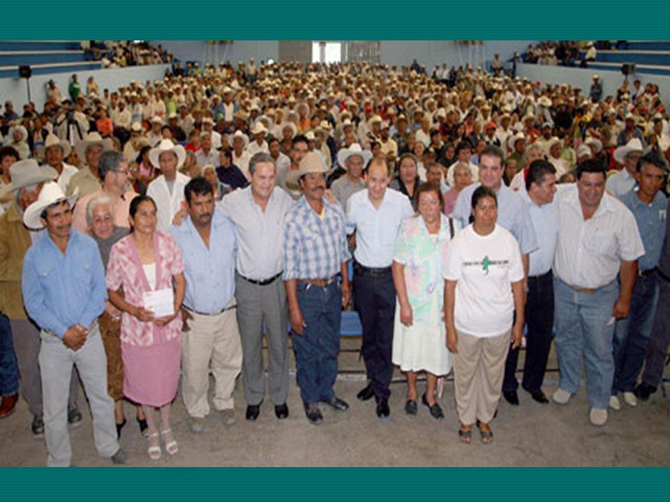 SÍNTESIS GENERAL A.- DEFINICIÓN DE DESARROLLO RURAL B).- OPERATIVO Acciones y dinámicas Efectos y causas COLEGIO DE POSTGRADUADOS VERANO 2008 Dr.