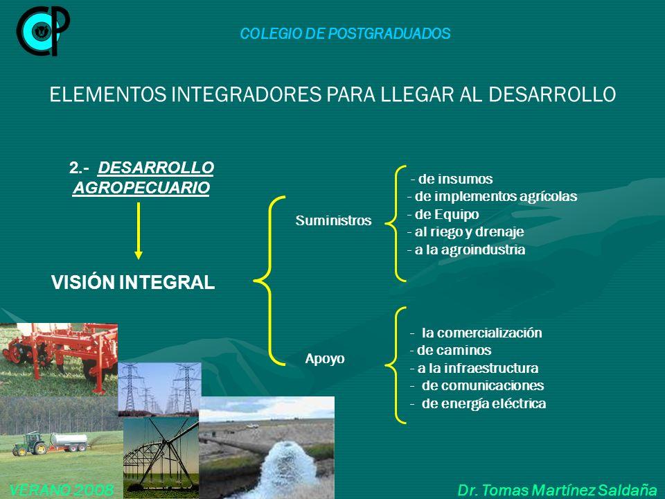 COLEGIO DE POSTGRADUADOS VERANO 2008 Dr. Tomas Martínez Saldaña ELEMENTOS INTEGRADORES PARA LLEGAR AL DESARROLLO VISIÓN INTEGRAL - la comercialización