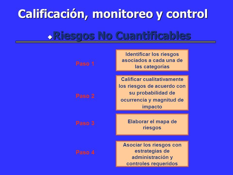 Identificar los riesgos asociados a cada una de las categorías Calificar cualitativamente los riesgos de acuerdo con su probabilidad de ocurrencia y m