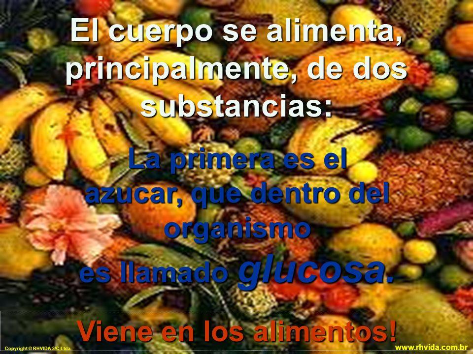 Copyright © RHVIDA S/C Ltda. www.rhvida.com.br La primera es el azucar, que dentro del organismo es llamado glucosa. El cuerpo se alimenta, principalm