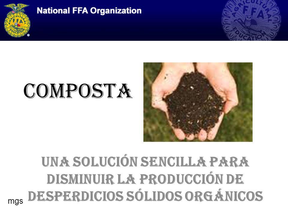 QUE ES COMPOSTA Biodegradación de materia orgánica Es llevado a cabo por organismos y microorganismos del suelo bajo condiciones aeróbicas La producción de composta reduce el volumen de desperdicios entre un 50 y 85% mgs