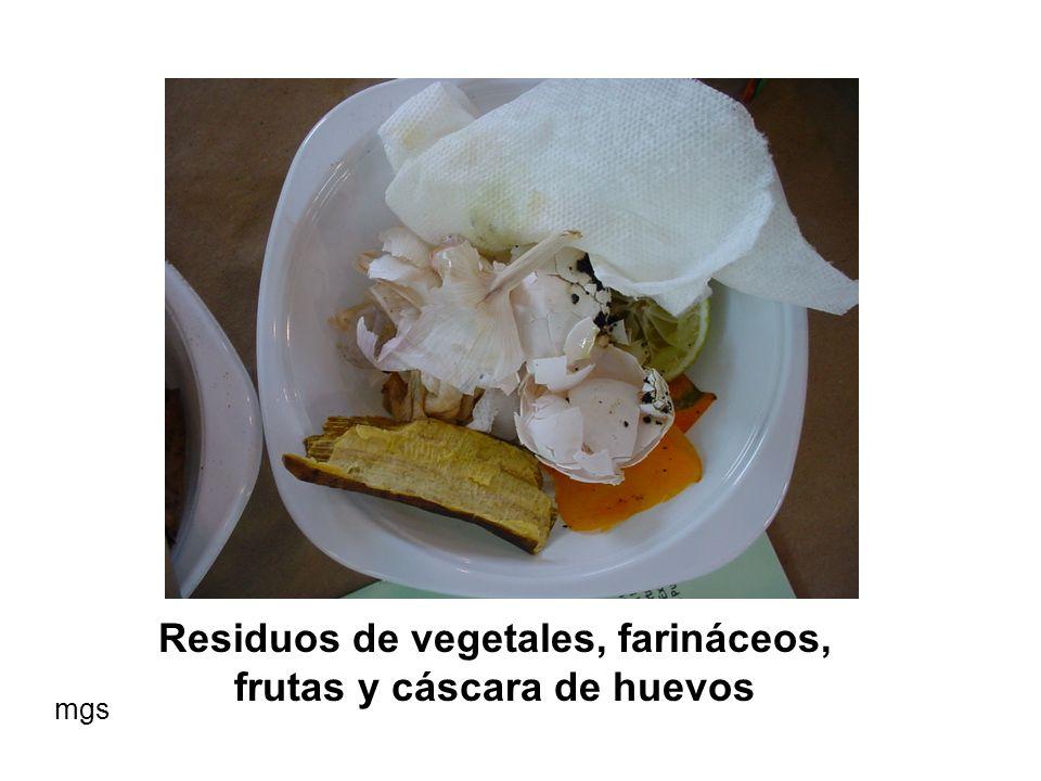 Sobrantes de la preparación de alimentos mgs