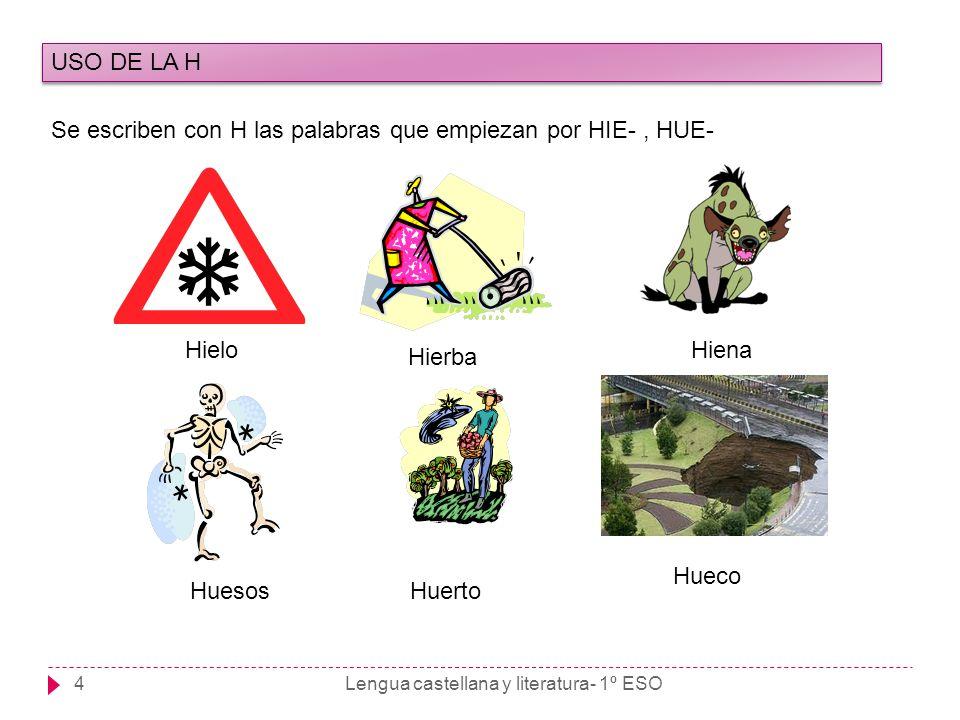 Lengua castellana y literatura- 1º ESO4 USO DE LA H Se escriben con H las palabras que empiezan por HIE-, HUE- Hielo Hierba Hiena HuesosHuerto Hueco