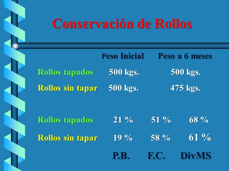 Conservación de Rollos P eso Inicial Peso a 6 meses P eso Inicial Peso a 6 meses Rollos tapados 500 kgs. 500 kgs. Rollos tapados 500 kgs. 500 kgs. Rol