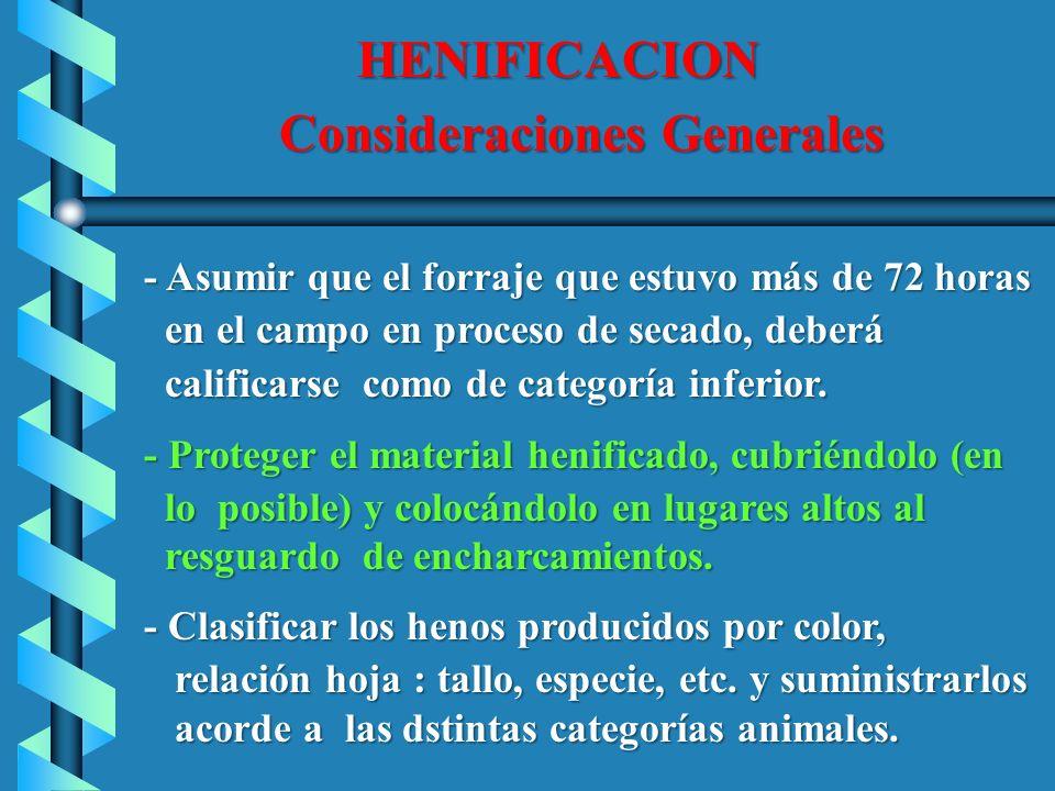 HENIFICACION HENIFICACION Consideraciones Generales Consideraciones Generales - Asumir que el forraje que estuvo más de 72 horas - Asumir que el forra