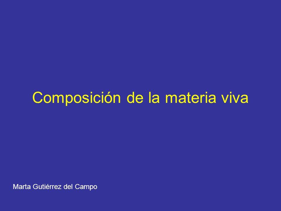 Composición de la materia viva Marta Gutiérrez del Campo