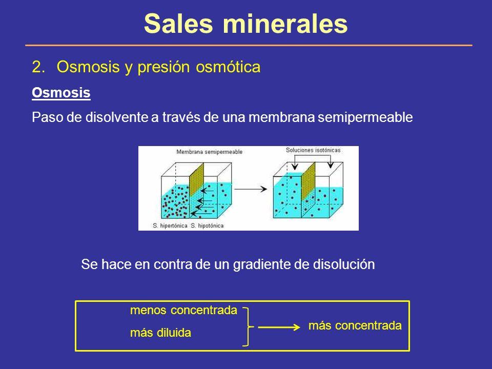 Sales minerales 2.Osmosis y presión osmótica Osmosis Paso de disolvente a través de una membrana semipermeable Se hace en contra de un gradiente de di