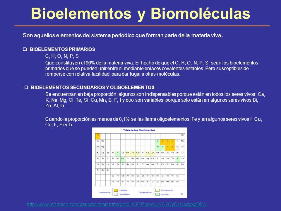 Bioelementos y Biomoléculas Son aquellos elementos del sistema periódico que forman parte de la materia viva. BIOELEMENTOS PRIMARIOS. C, H, O, N, P, S