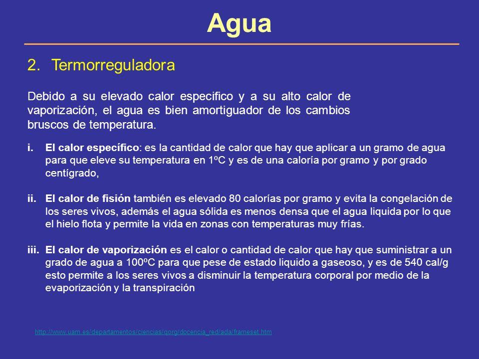 2.Termorreguladora Debido a su elevado calor especifico y a su alto calor de vaporización, el agua es bien amortiguador de los cambios bruscos de temp