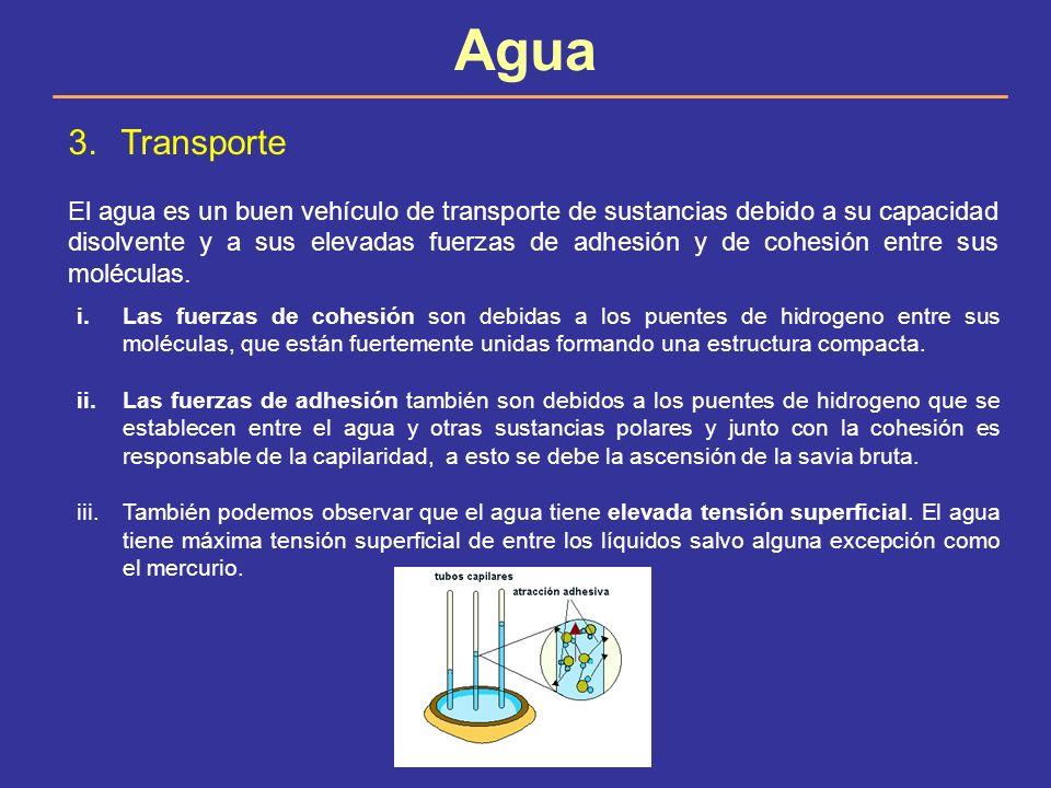 Agua 3.Transporte El agua es un buen vehículo de transporte de sustancias debido a su capacidad disolvente y a sus elevadas fuerzas de adhesión y de c