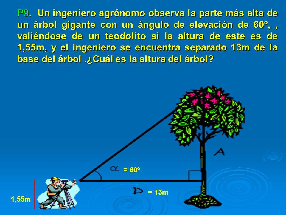 P9. Un ingeniero agrónomo observa la parte más alta de un árbol gigante con un ángulo de elevación de 60º,, valiéndose de un teodolito si la altura de